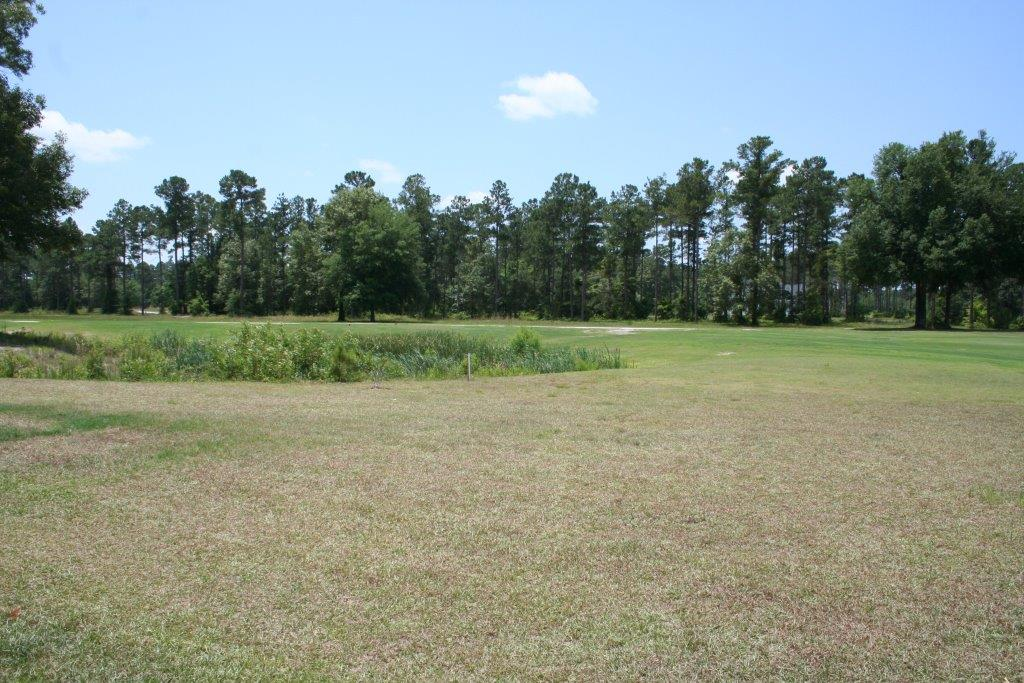Shellman Bluff Condo Plantation Properties Amp Land