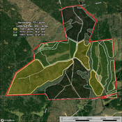 Detailed Aerial showing timber info.