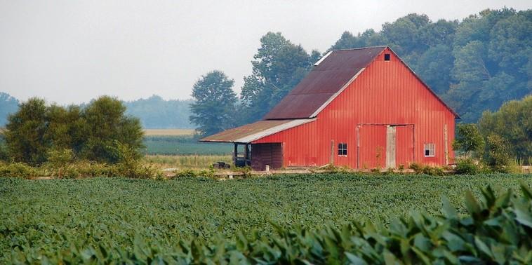 Georgia Timber Land House Farms For Sale Landandrivers